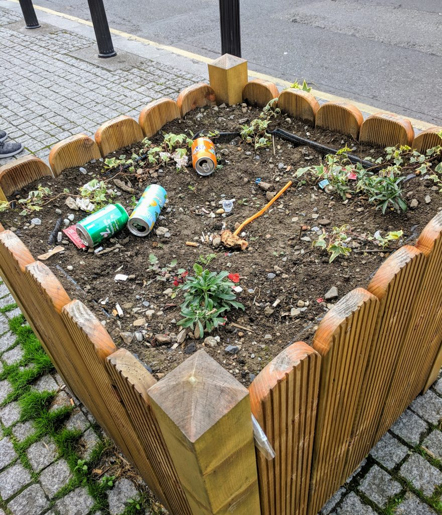 Litter in garden box in Dublin